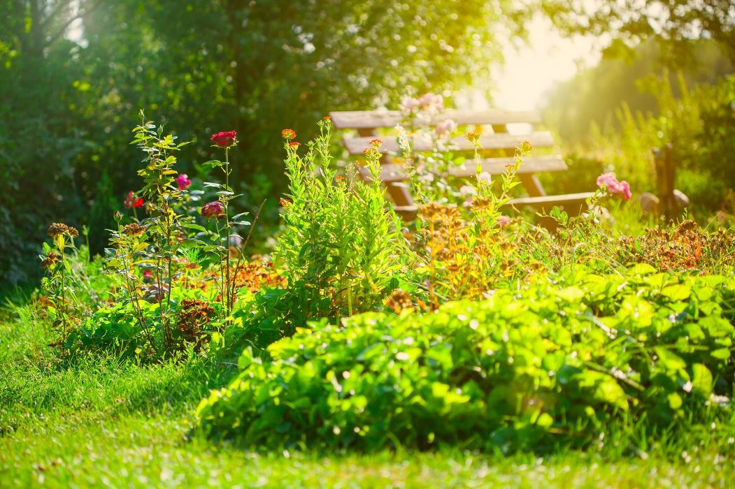 Outdoor Ideas Be Inspired Outdoor Ideas